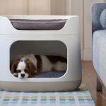 Bunkbed 3 en 1: el cajón multifunción para tu perro