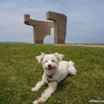Las 10 ciudades más dog friendly de España
