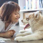 El 86% de los cuidadores de mascotas son mujeres y otros datos sobre perros y gatos
