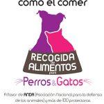 Dona pienso para mascotas en El Corte Inglés para ayudar a las protectoras