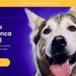 Nace un servicio integral y personalizado para ayudarte con tus mascotas